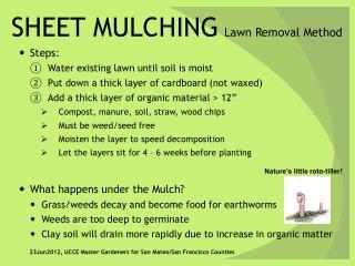 SHEET MULCHING Lawn Removal Method