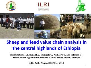 Sheep and feed value chain analysis in the central highlands of Ethiopia