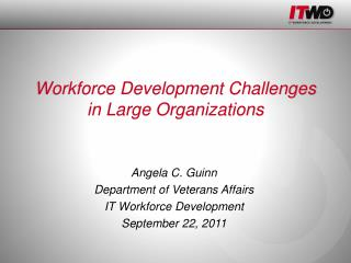 Workforce Development Challenges in Large Organizations