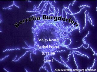 Ashley Kruzel Rachel Pearce 5/12/09 Core 3