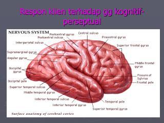 Respon klien terhadap gg kognitif-perseptual