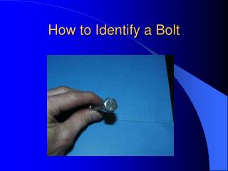 How to Identify a Bolt