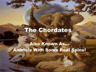 The Chordates