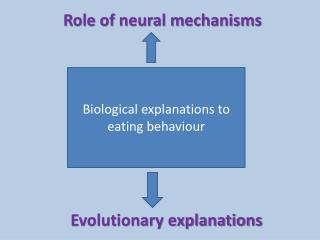 Biological explanations to eating behaviour