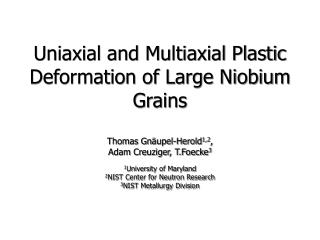 Uniaxial and Multiaxial Plastic Deformation of Large Niobium Grains
