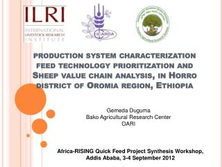 Africa-RISING Quick Feed Project Synthesis Workshop, Addis Ababa, 3-4 September 2012