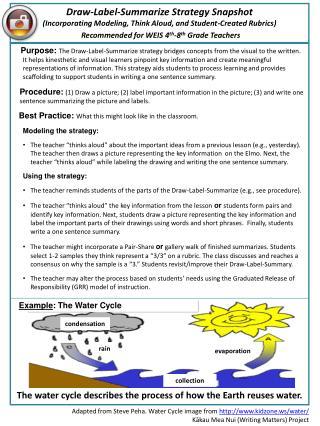 Draw-Label-Summarize Strategy Snapshot