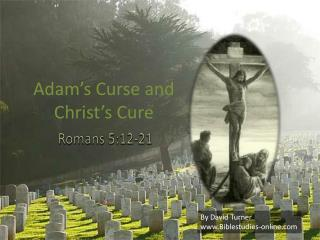 Adam's Curse and Christ's Cure