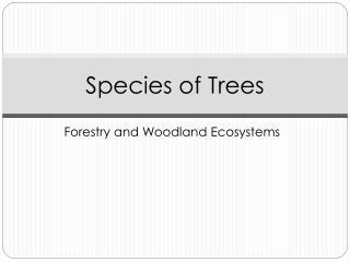 Species of Trees
