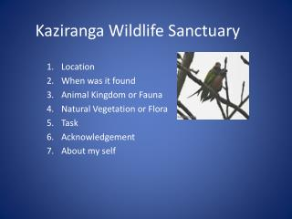 Kaziranga Wildlife Sanctuary