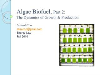 Algae  Biofuel ,  Part 2: The Dynamics of Growth & Production