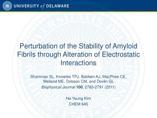 Perturbation of the Stability of Amyloid Fibrils through Alteration of Electrostatic Interactions
