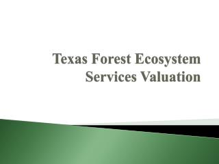 Texas Forest Ecosystem Services Valuation
