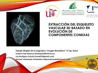 Extracción del esqueleto vascular 3d basado en evolución de componentes  conexas