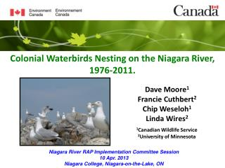 Colonial Waterbirds Nesting on the Niagara River, 1976-2011.