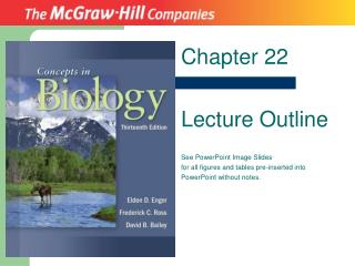 Chapter 22 Lecture Outline See PowerPoint Image Slides