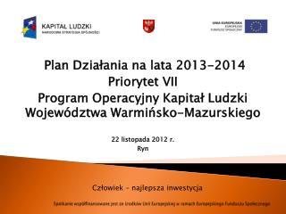 Plan Działania na lata 2013-2014  Priorytet VII
