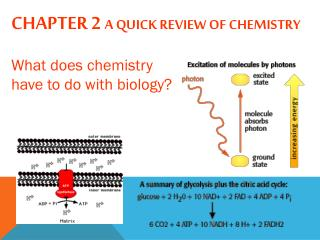 Chapter 2  A quick review of Chemistry