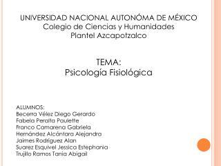 UNIVERSIDAD NACIONAL AUTONÓMA DE MÉXICO Colegio de Ciencias y Humanidades Plantel Azcapotzalco