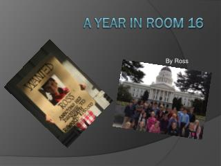 A Year in Room 16