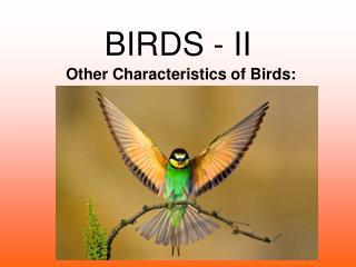 BIRDS - II