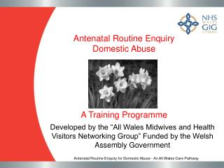 Antenatal Routine Enquiry  Domestic Abuse