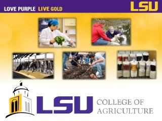 Louisiana State University Agricultural and Mechanical College