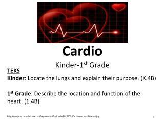 Cardio Kinder-1 st  Grade