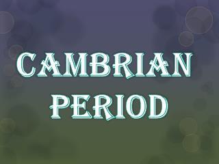 Cambrian  Period