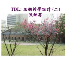 TBL:  主題教學設計  ( 二 )  陳錦芬