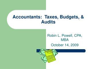 Accountants:  Taxes, Budgets, & Audits