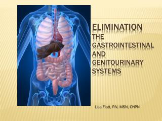 Elimination The Gastrointestinal and Genitourinary Systems