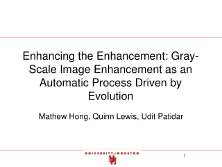 Enhancing the Enhancement: Gray-Scale Image Enhancement as an Automatic Process Driven by Evolution