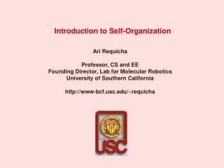 Introduction to Self-Organization