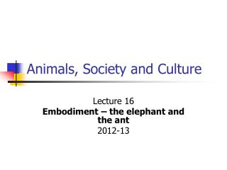 Animals, Society and Culture