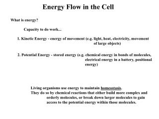 Energy Flow in the Cell