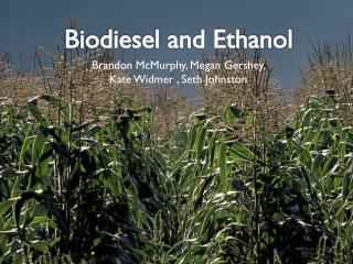 Biodiesel and Ethanol