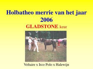 Holbatheo merrie van het jaar  2006 GLADSTONE keur Voltaire x Irco Polo x Halewijn
