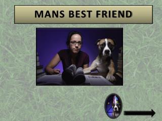 MANS BEST FRIEND