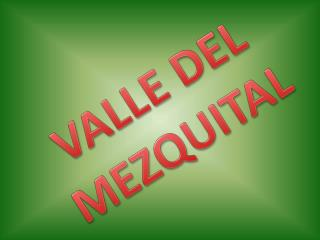 VALLE DEL MEZQUITAL
