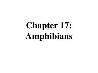 Chapter 17: Amphibians