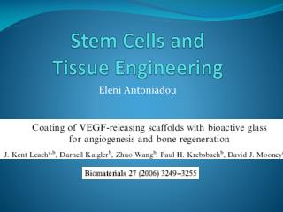 Stem Cells and  Tissue Engineering