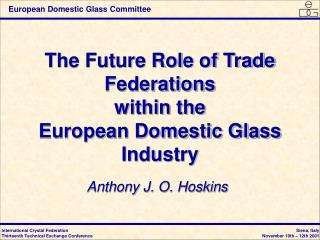 The Future Role of Trade Federations  within the  European Domestic Glass Industry