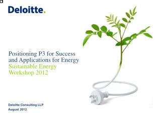 Positioning P3 for Success and Applications for Energy Sustainable Energy Workshop 2012