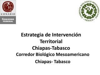Estrategia de Intervención Territorial Chiapas-Tabasco