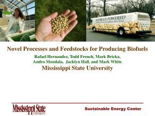 Novel Processes and Feedstocks for Producing Biofuels Rafael Hernandez, Todd French, Mark Bricka,