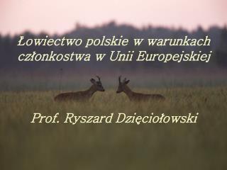 Łowiectwo polskie w warunkach członkostwa w Unii Europejskiej