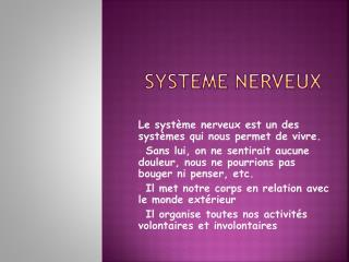 SYSTEME NERVEUX