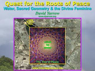 Quest for the Roots of Peace