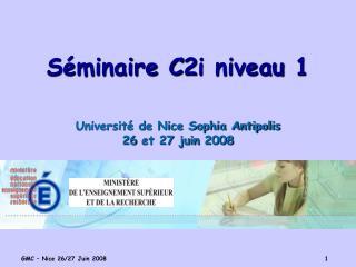 Séminaire C2i niveau 1 Université de Nice Sophia Antipolis 26 et 27 juin 2008